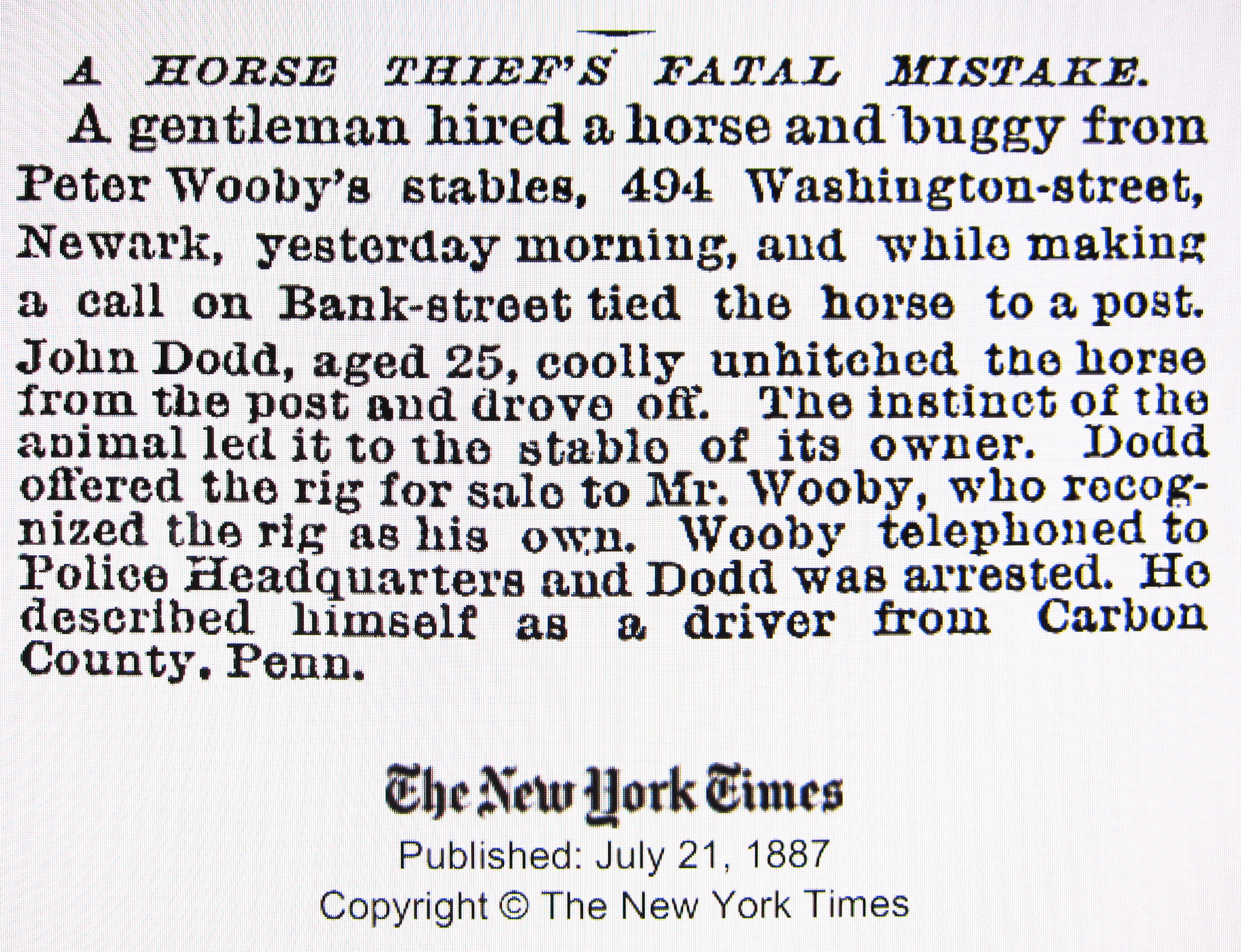 An Article About Peter Wooby When He Owned Stables in Newark, NJ.